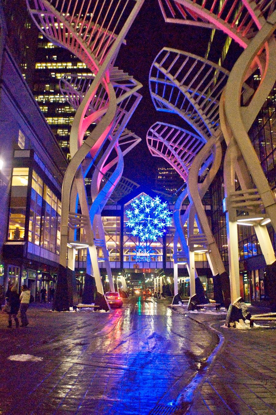 Galleria Trees, Calgary AB – Oct 16