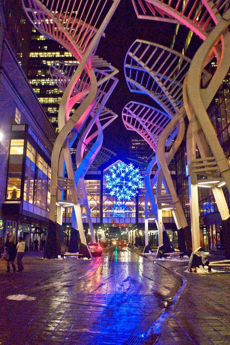 Galleria Trees, Calgary- Oct 14-20