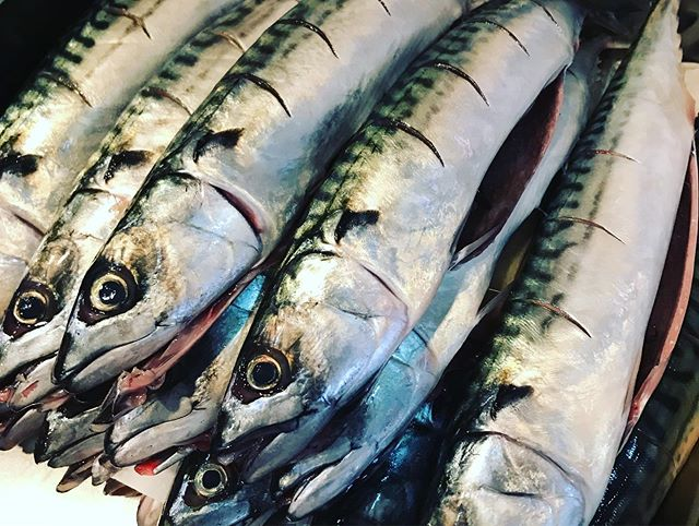 """Afternoon Derry """"Return Of The Mac"""" on the specials board @57 Strand Rd. BBQ Whole Mackerel Crisy Salad Salsa Verdi lime so simple but so good, if not my favourite fish from our seas! . . . . . #mackerel #pykenpommes #fresh #local #streetfood #fish #keepitsimple"""