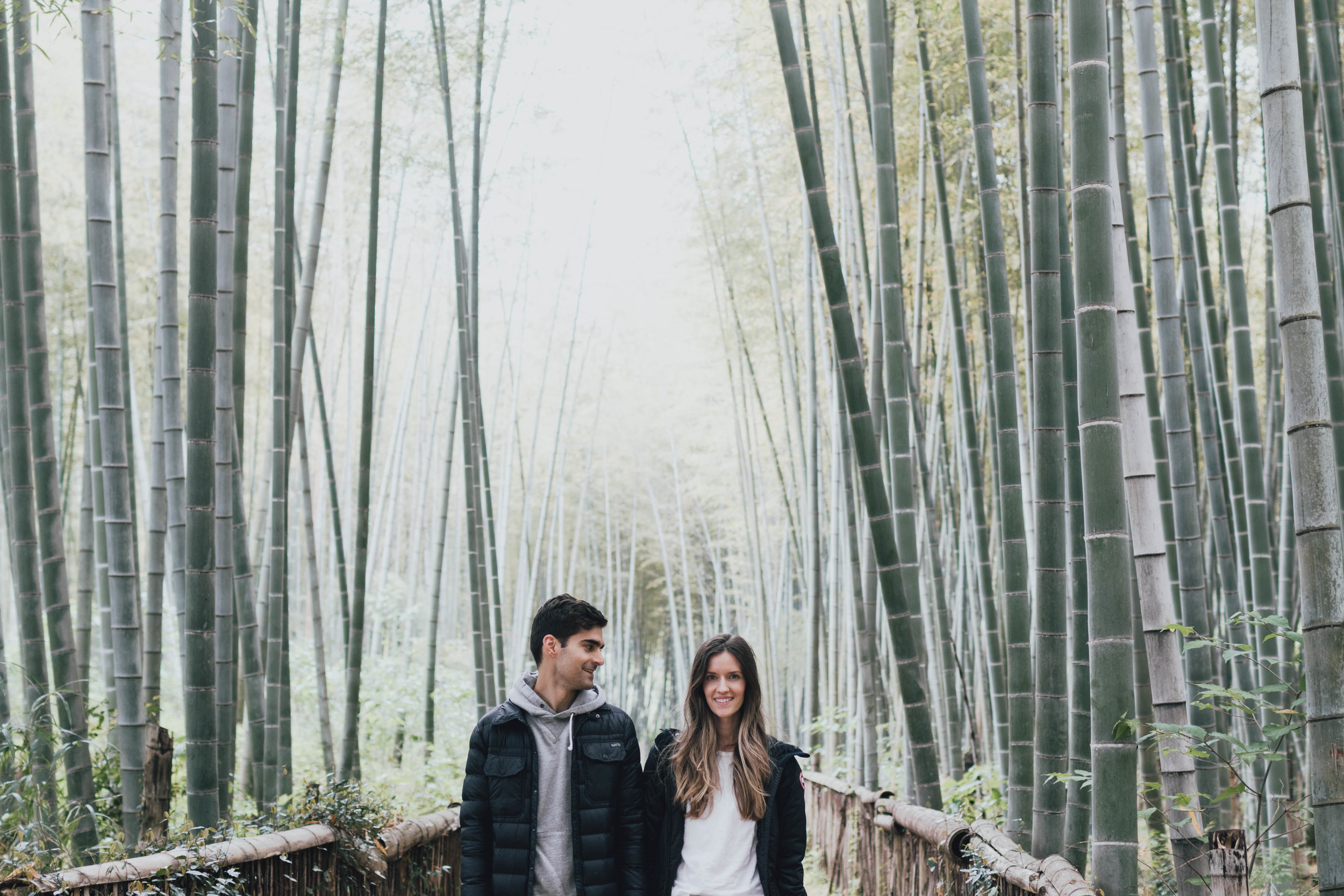 bamboo-forest-photos-by-samantha-look.jpg