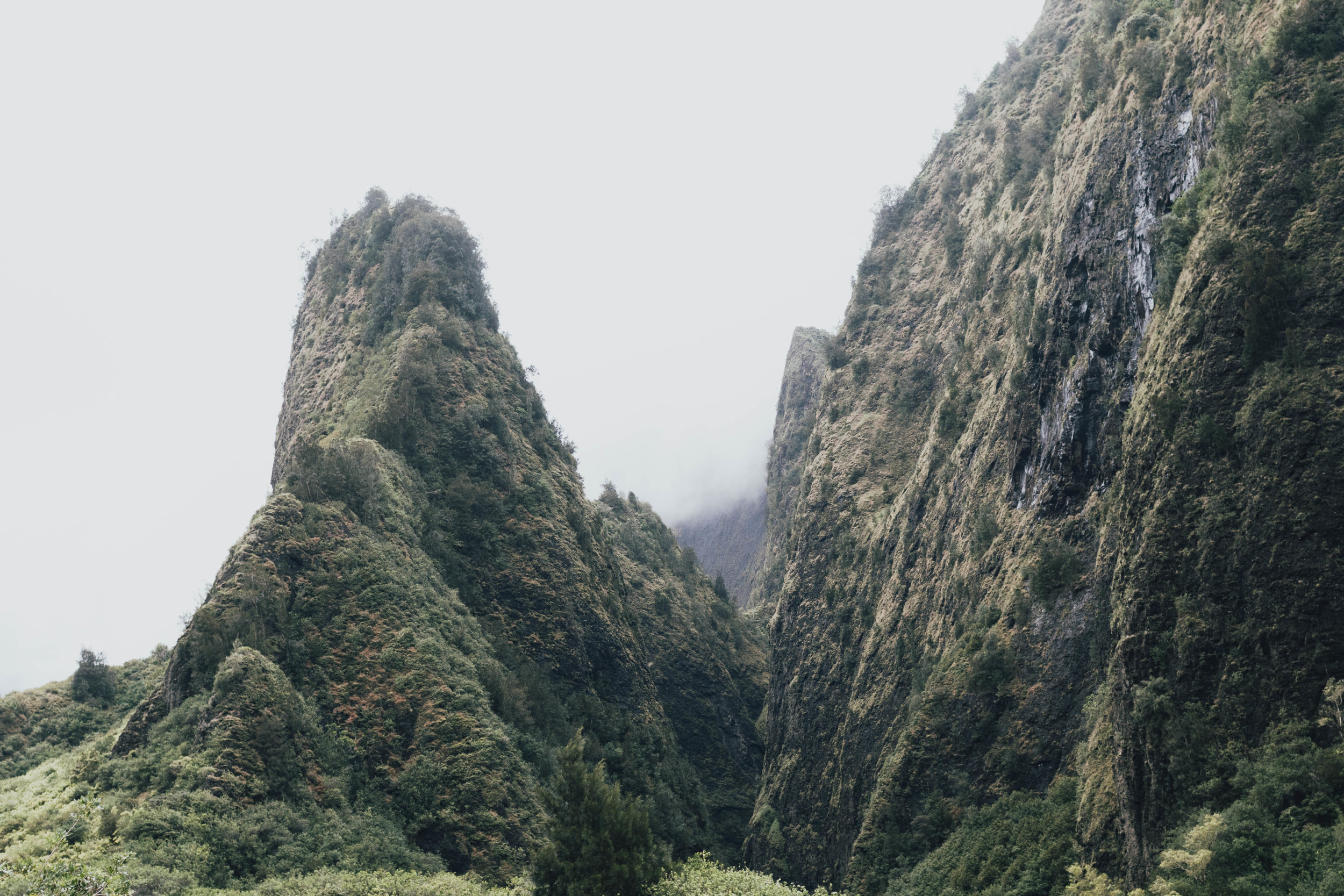 iao-valley-maui-photo-by-samantha-look.jpg