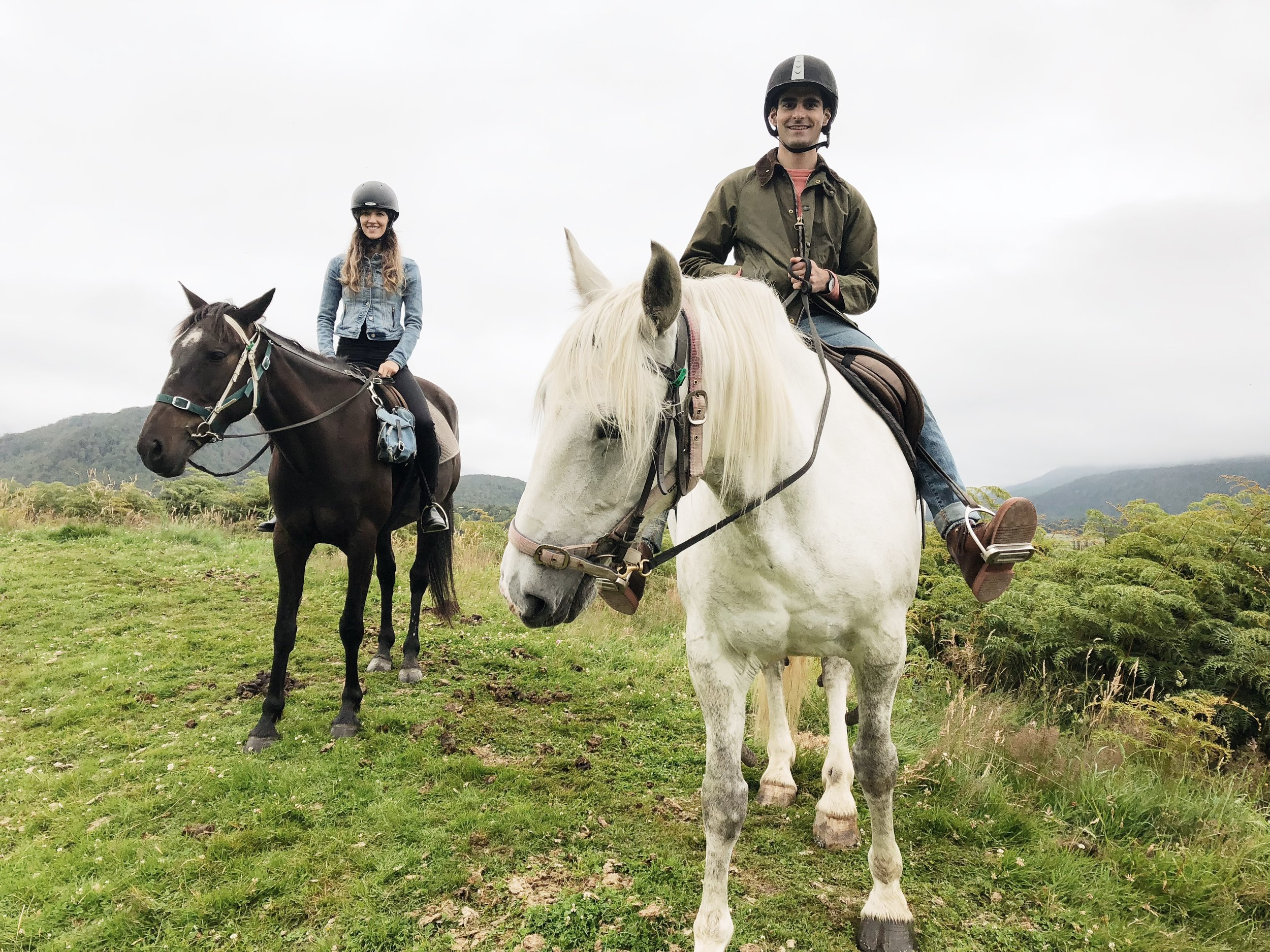 high-country-horses-photo-by-samantha-look.JPG