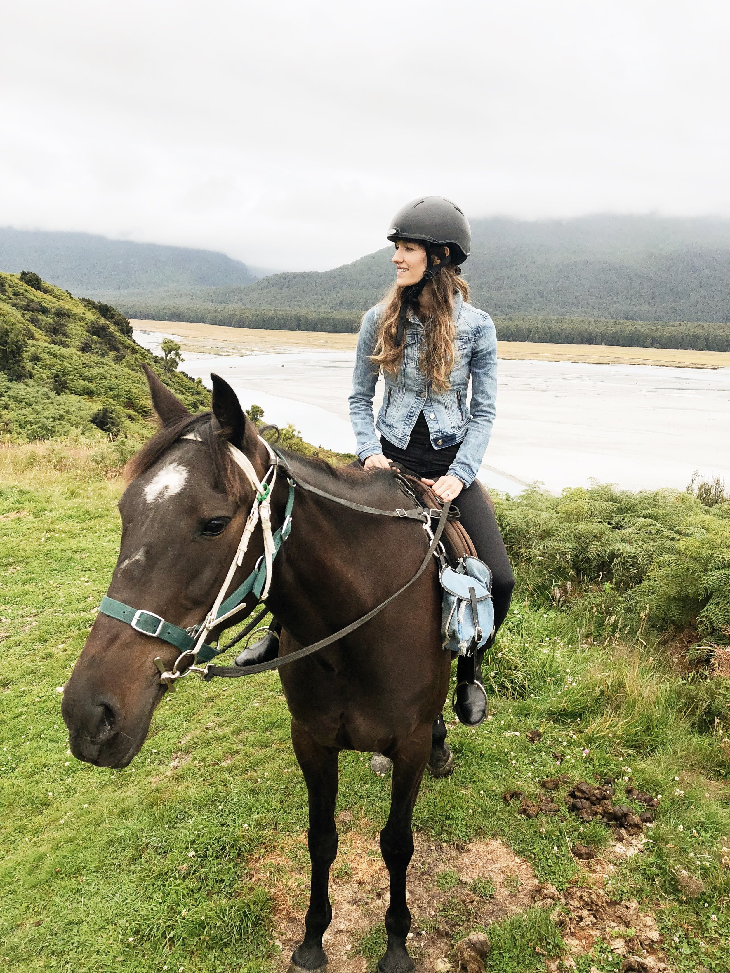high-country-horses-new-zealand-photo-by-samantha-look.JPG