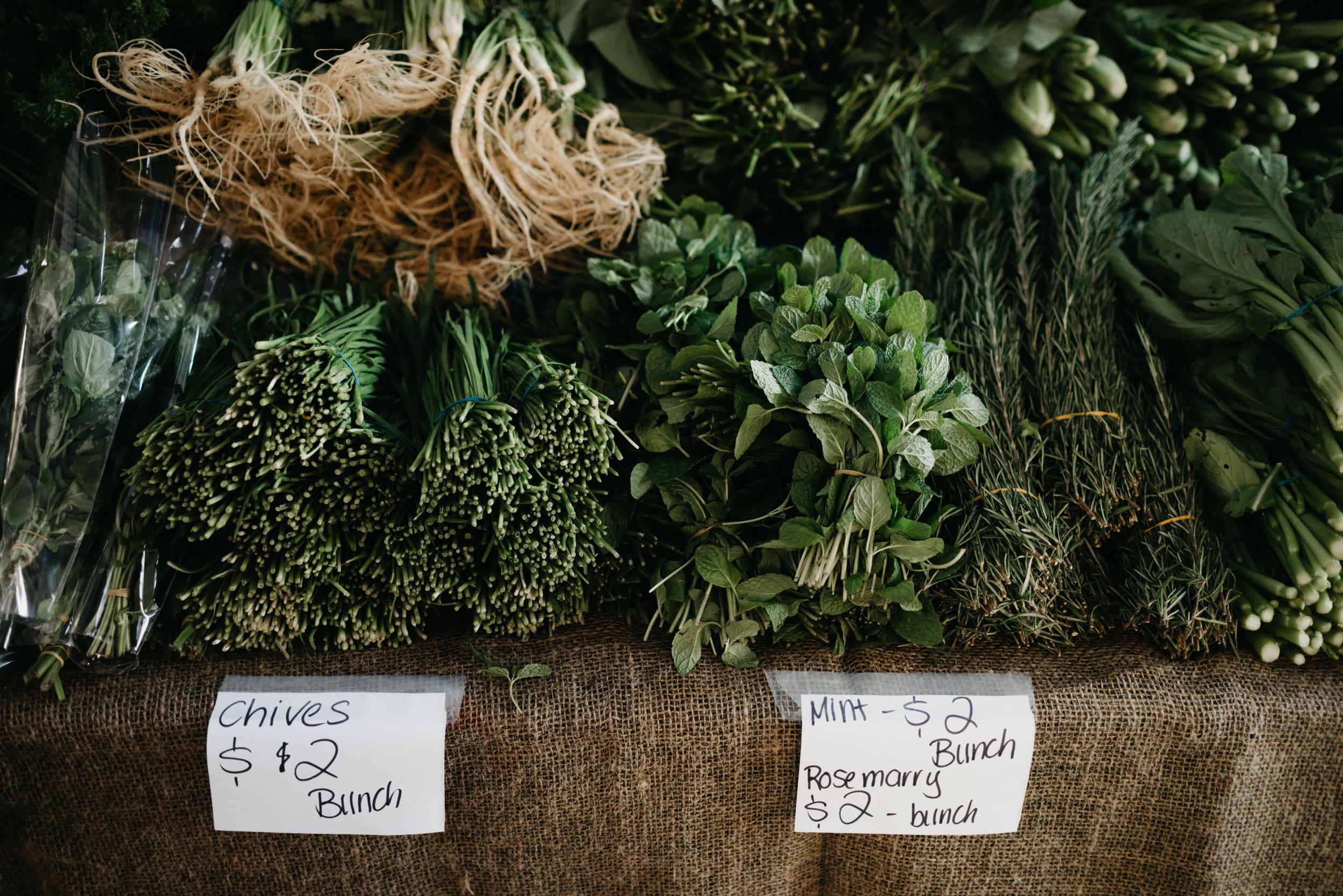 brisbane_farmers_market_photo_by_samantha_look.jpg