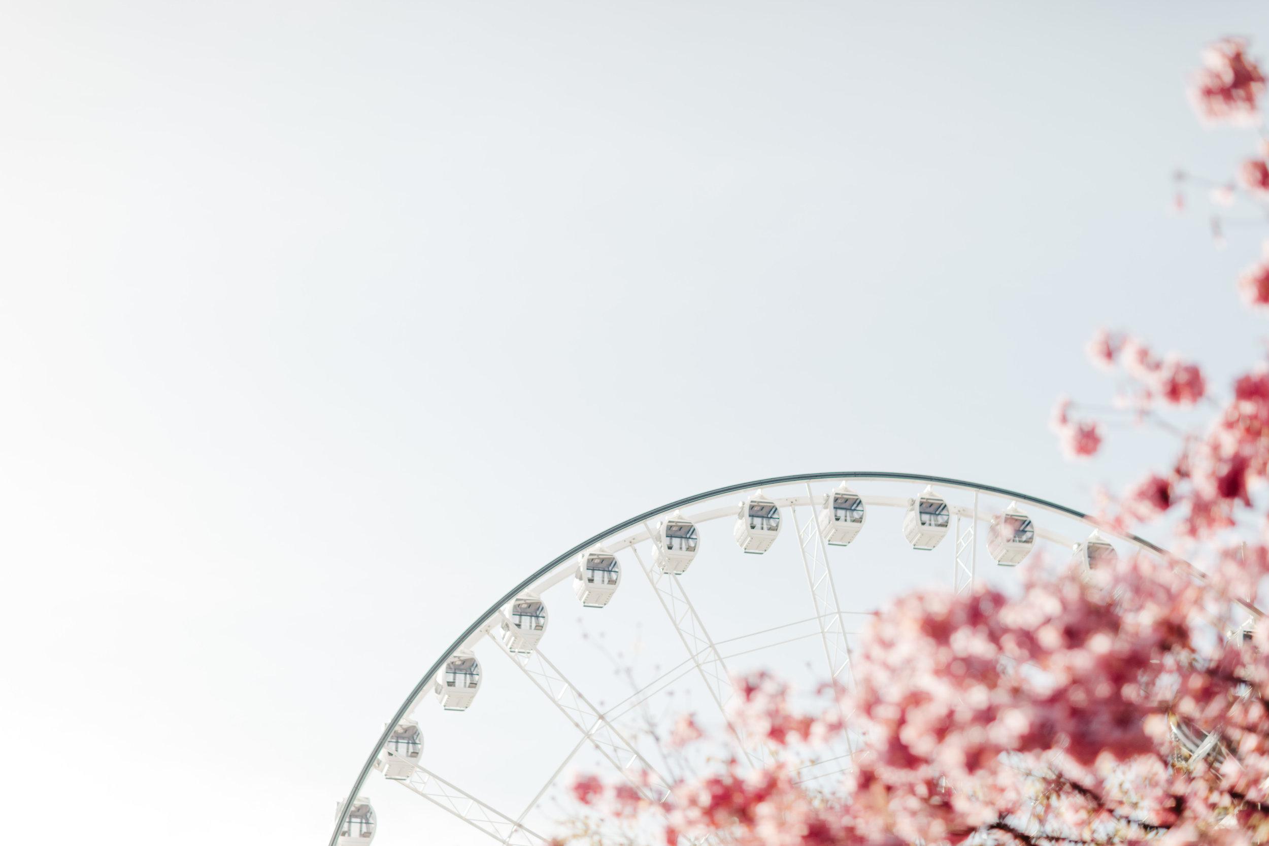 brisbane_ferris_wheel_photo_by_samantha_look.jpg