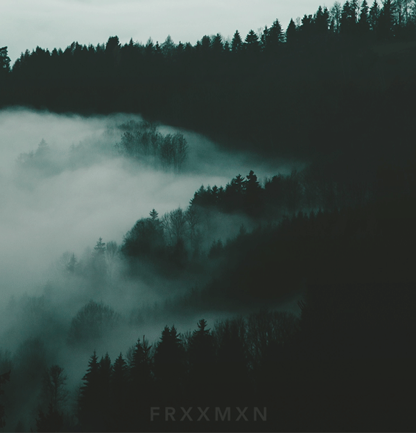 Cold-Nights_Frxxmxn.png