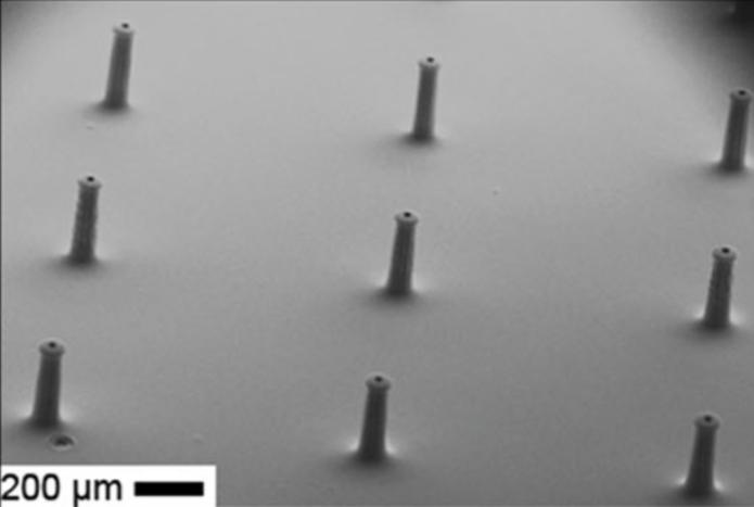 3 x 3 array of micro-needles