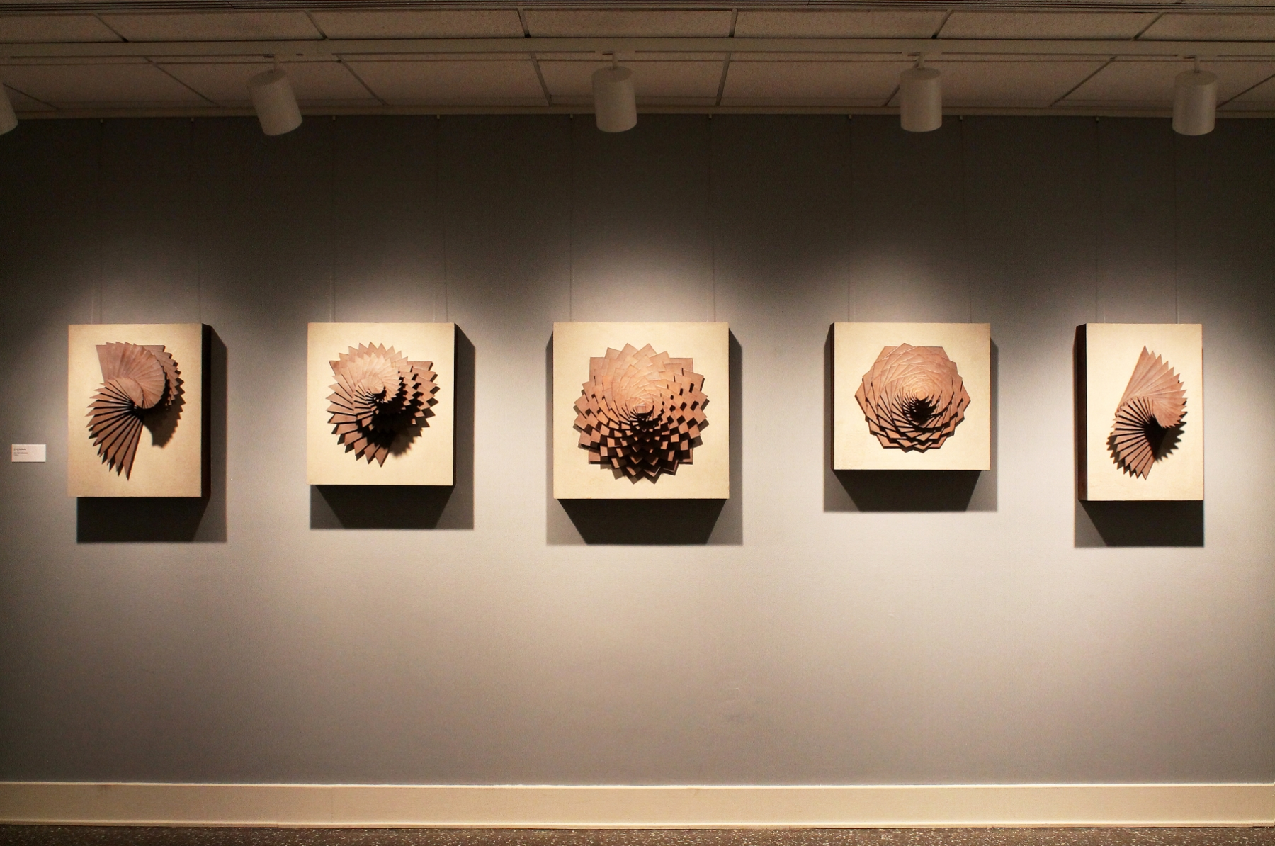 Harmonic Geometry I - V  |  210 inches across  | Stoneware, Stained birch, Sand  |  2015