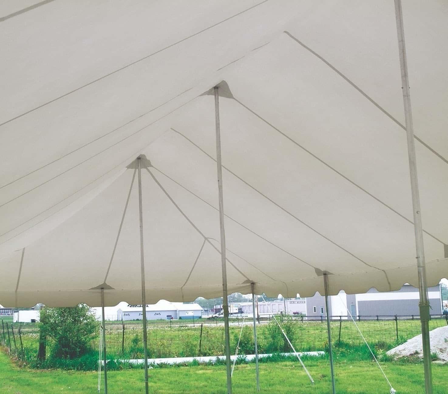 under_canopy-min.jpg