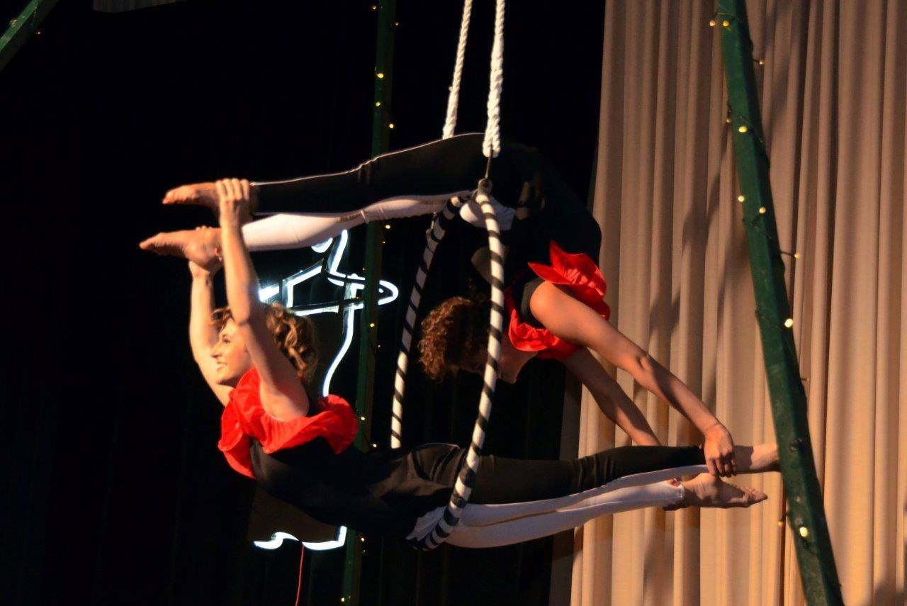 Circus-Themed Lyra Duo  Multiple Music and Costume Options Available
