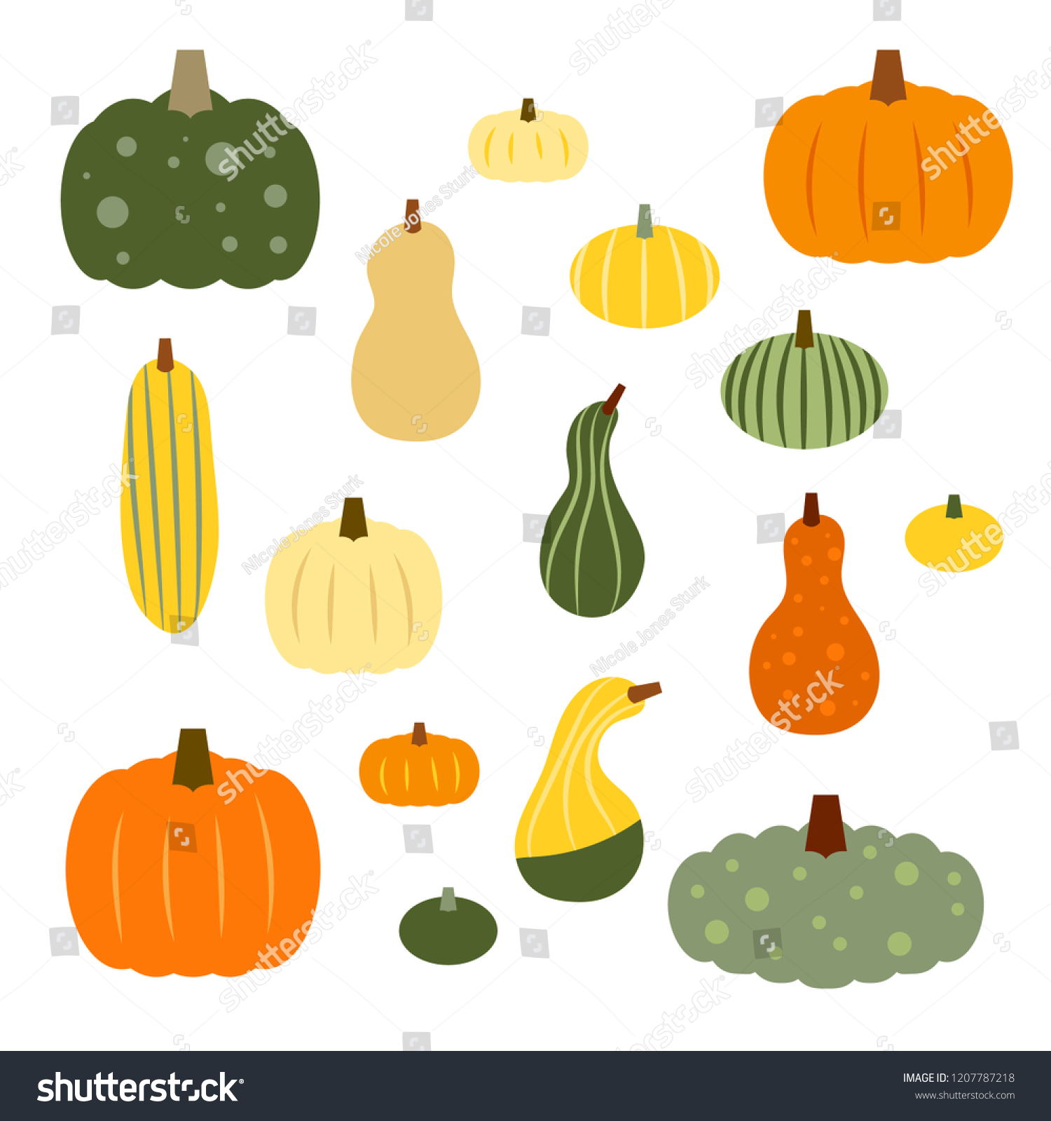 stock-vector-set-of-colorful-vector-autumn-gourds-in-various-shapes-and-sizes-1207787218.jpg