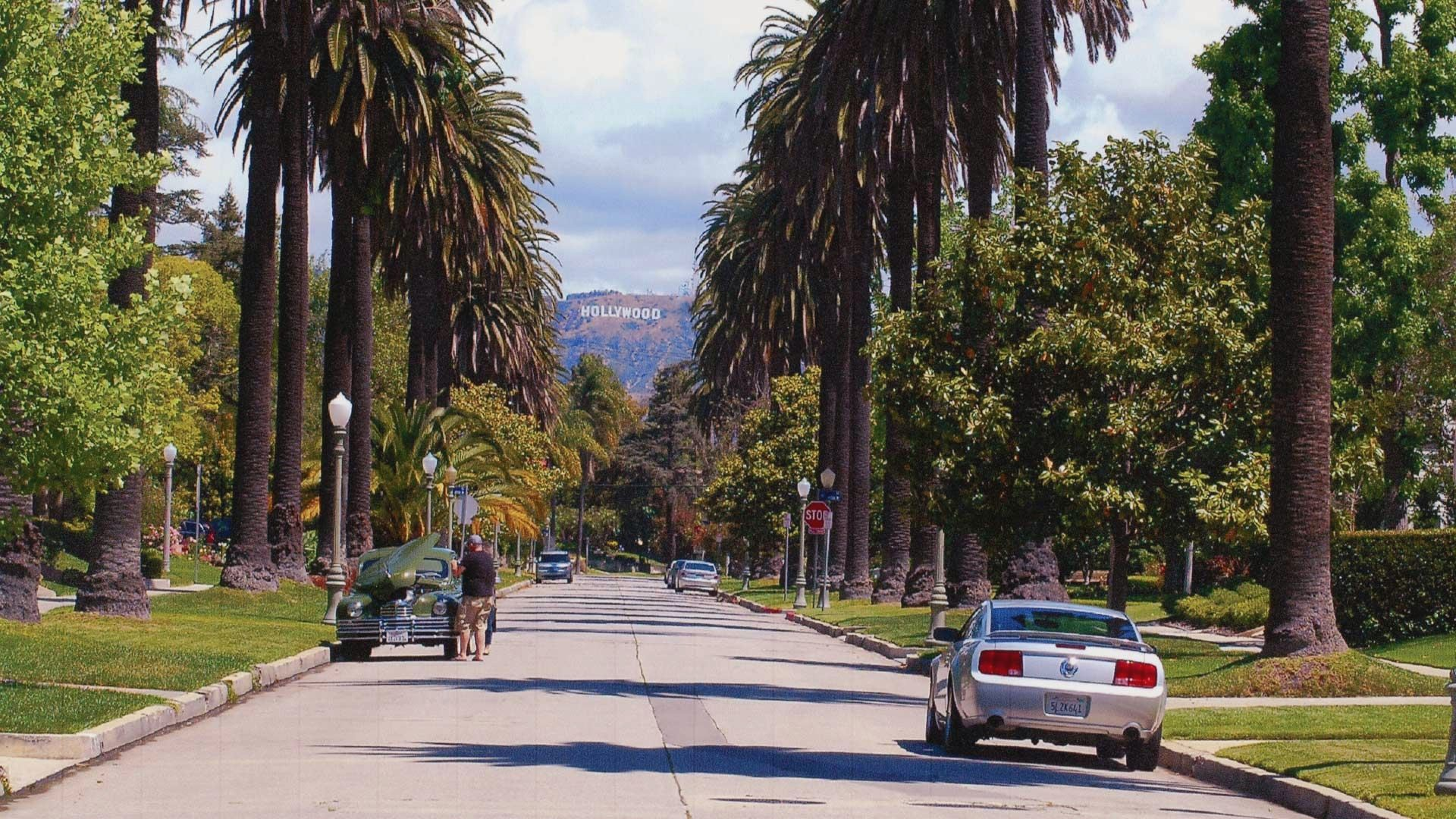 Los Angeles is not all freeway. There are beautiful neighborhoods, but these can be easy to get lost in too. Take your time, plan ahead, and maintain a safe distance from other drivers to avoid a car crash.