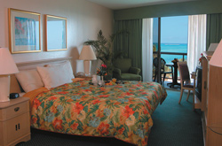 hotels-detailspage-43-3.jpg