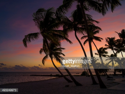 Photo by Scott_Walton/iStock / Getty Images