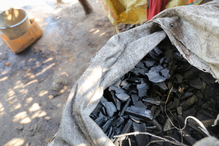 Illegal charcoal trade threatens Myanmar's remaining mangroves