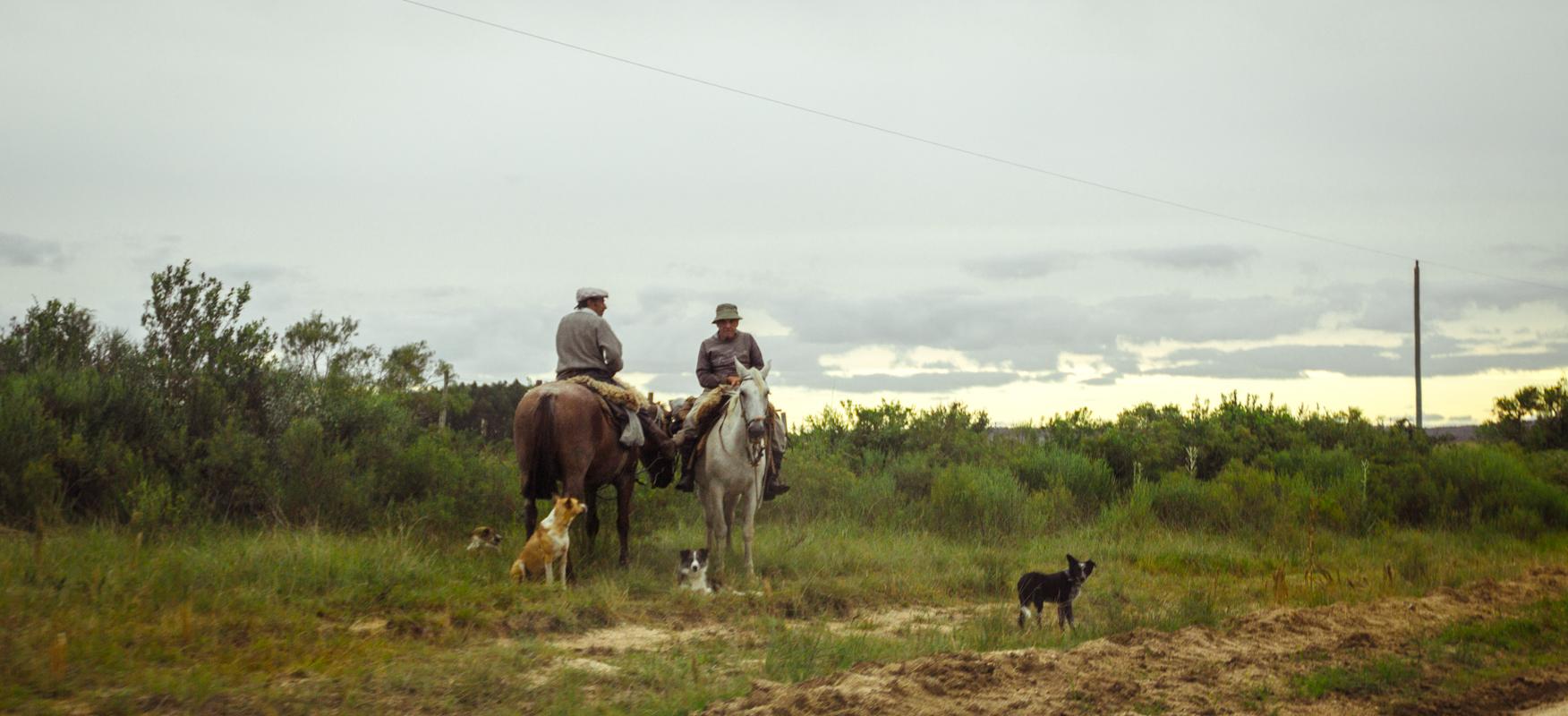 two men on horses.jpg