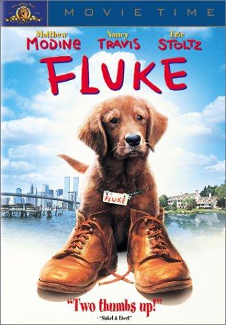 The Fluke