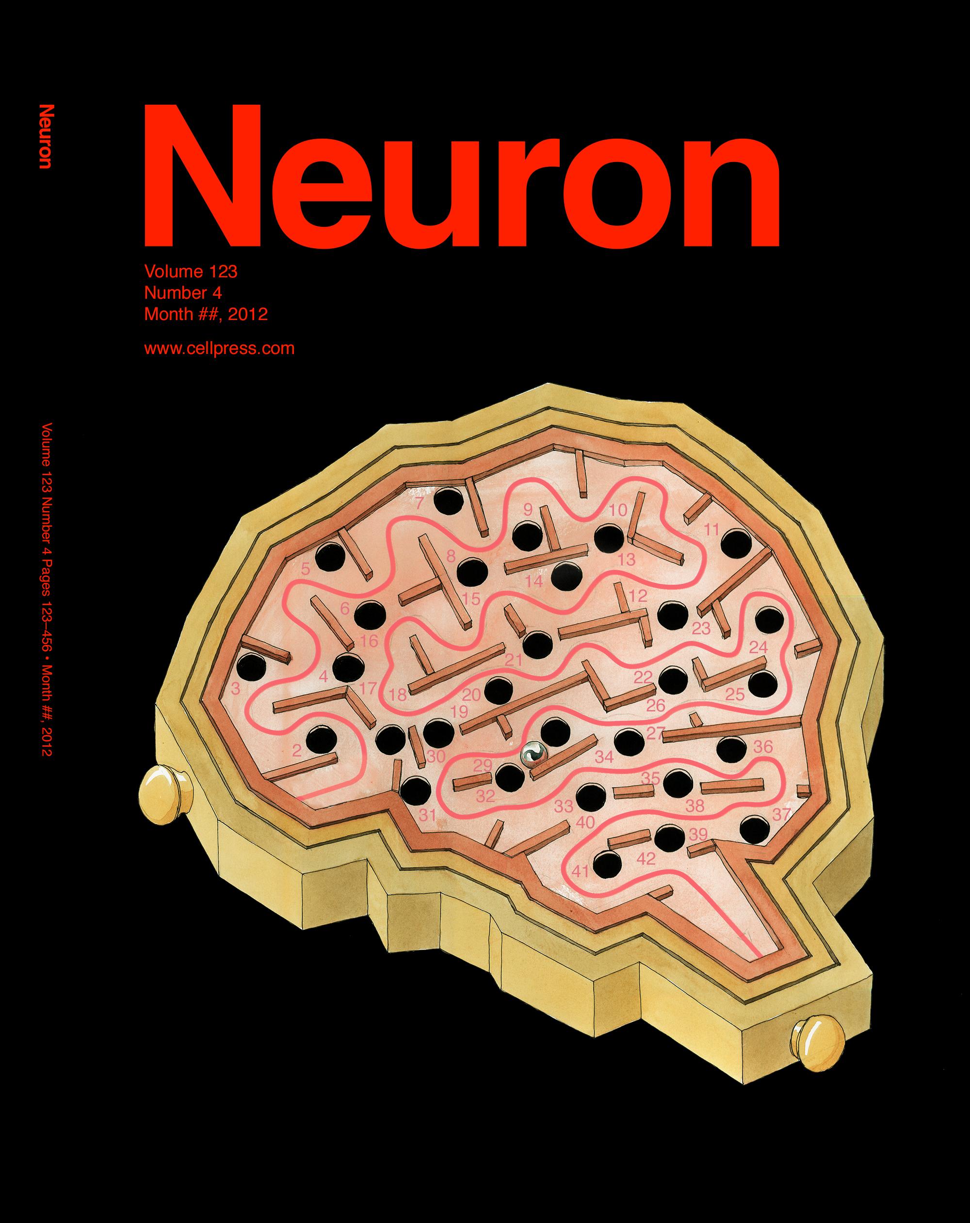 Cover - brain labyrnth v3 (small).jpg