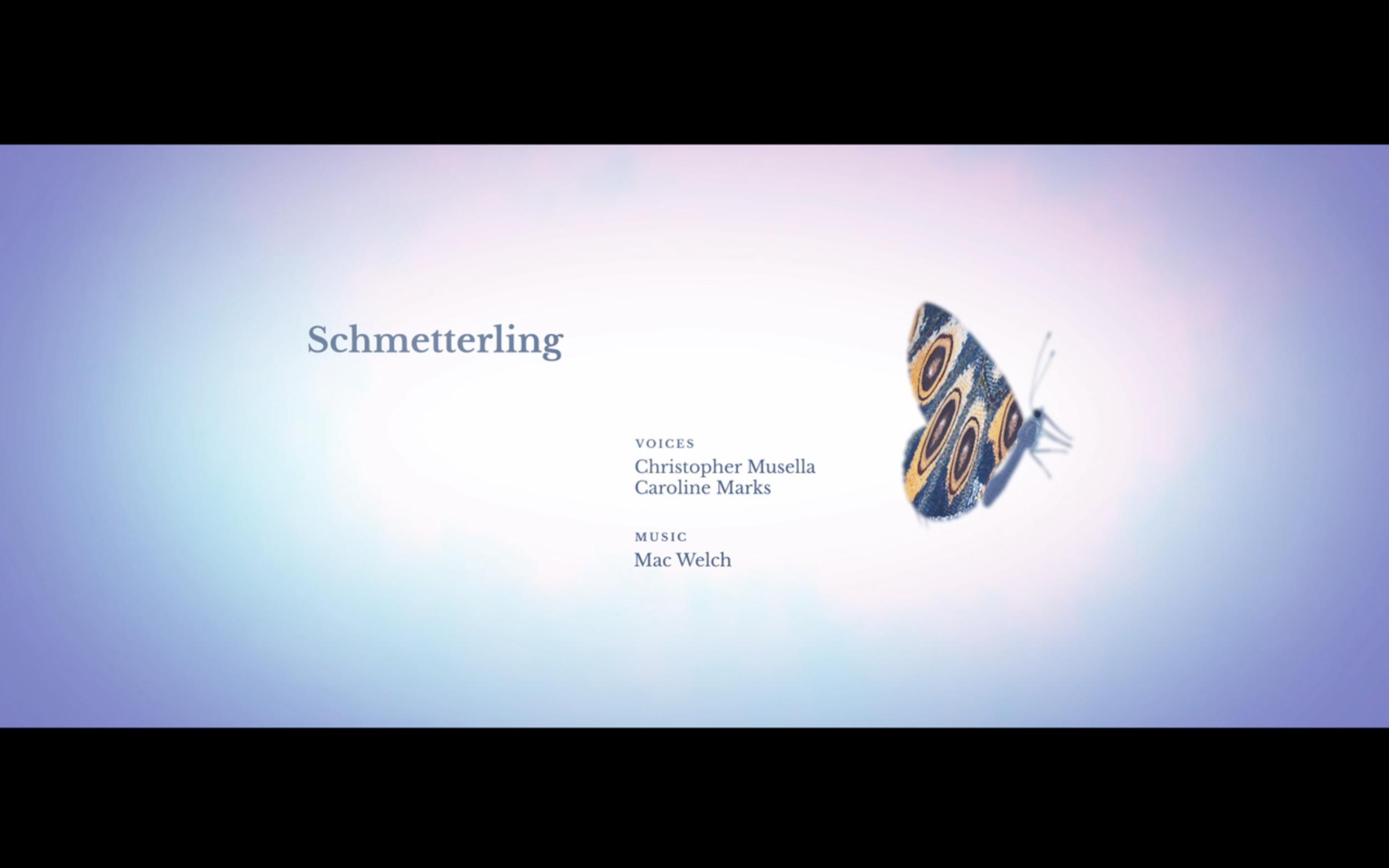 Schmetterling_sf11.png