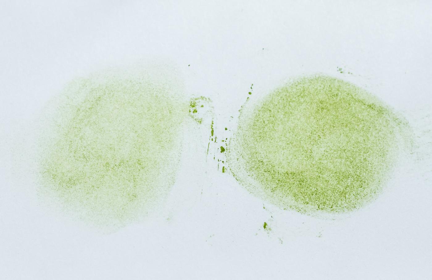 Texture evaluation, on the left, Saemidori. On the right, Okumidori.