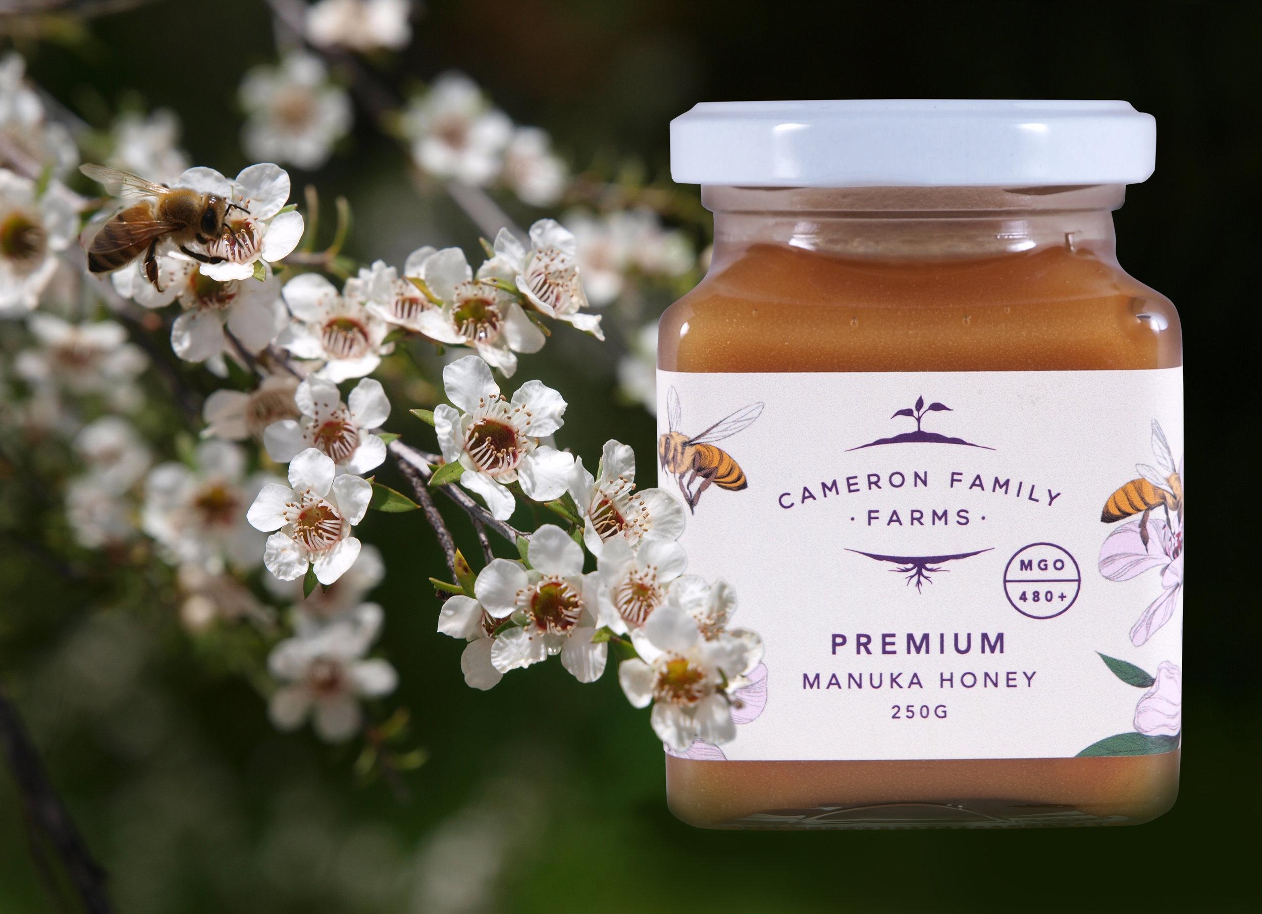 Cameron Family Farm-Honey-001.jpg
