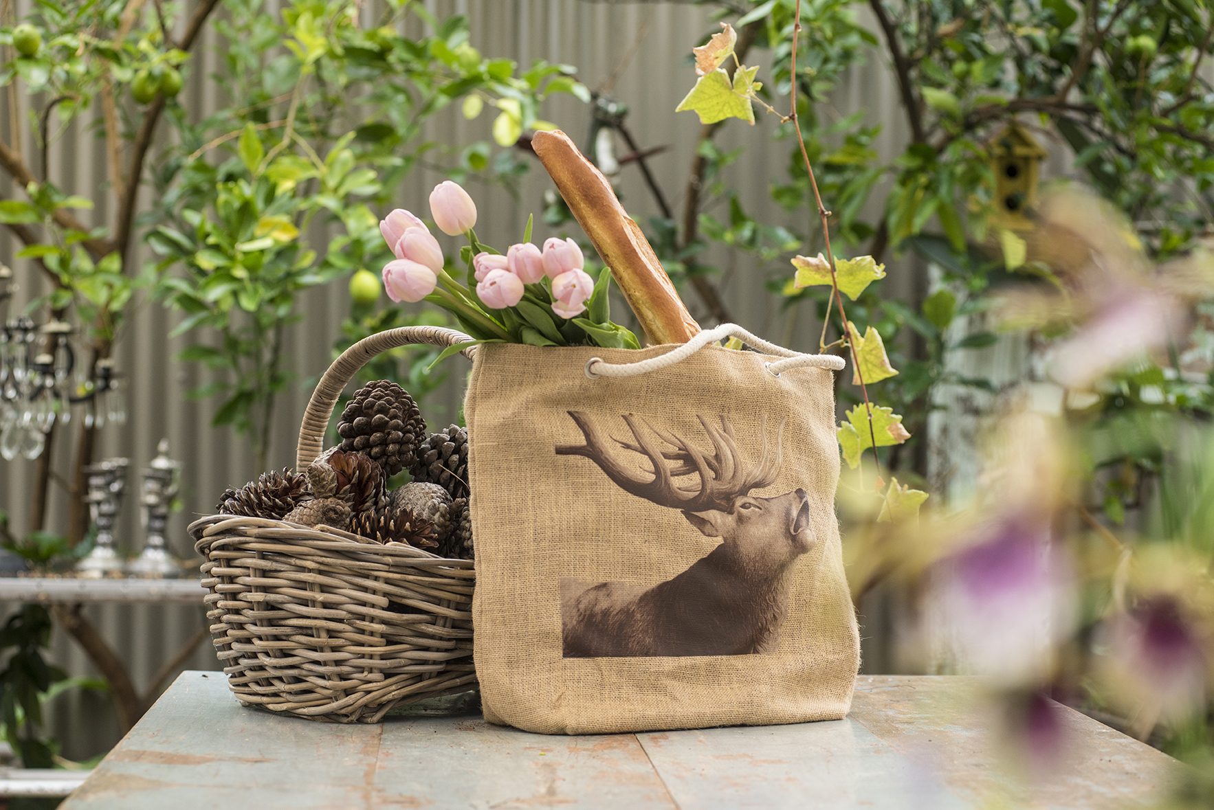 Jute Bag Stag with thing in it.jpg