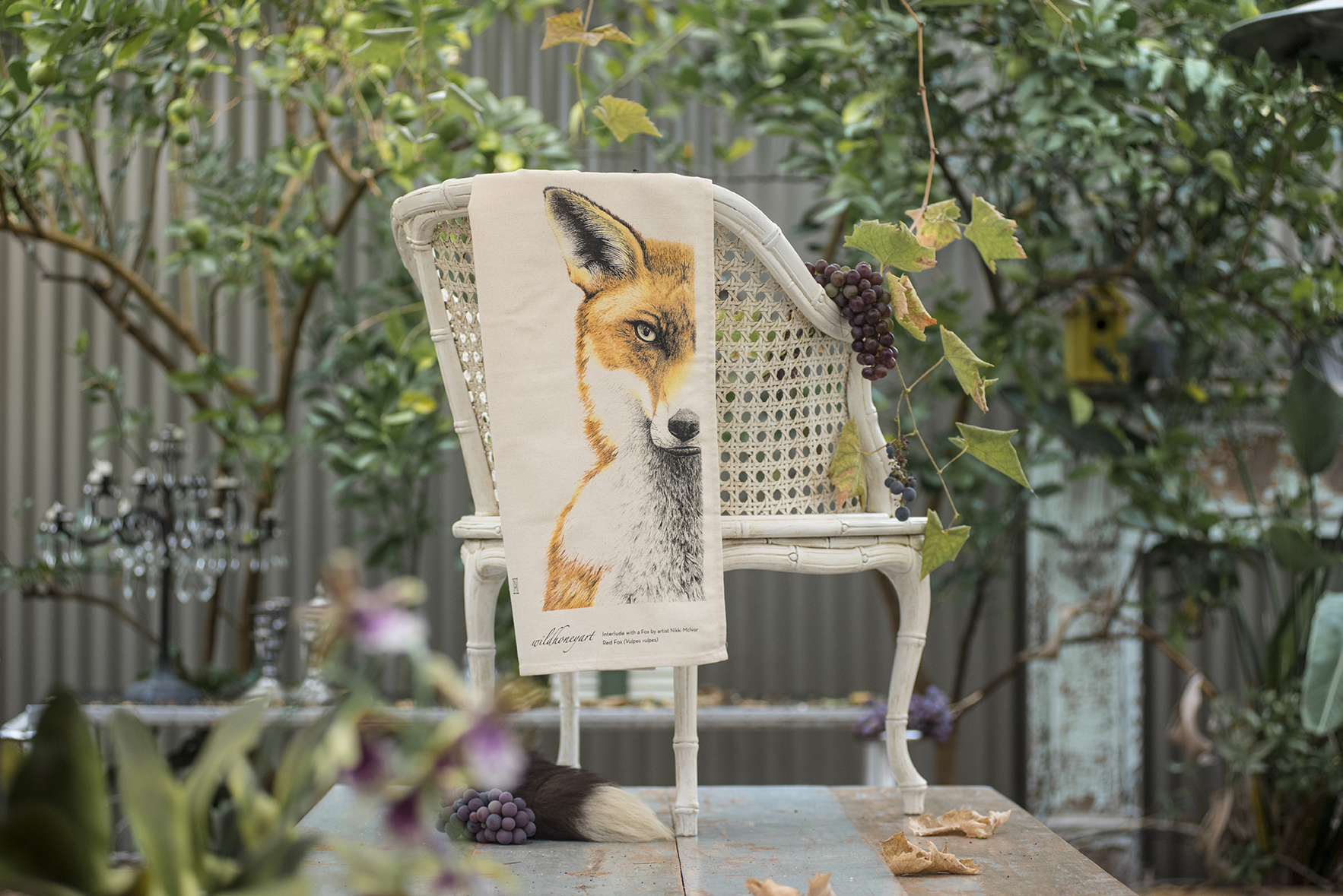 TT Fox 3 Colour on chair 1.jpg