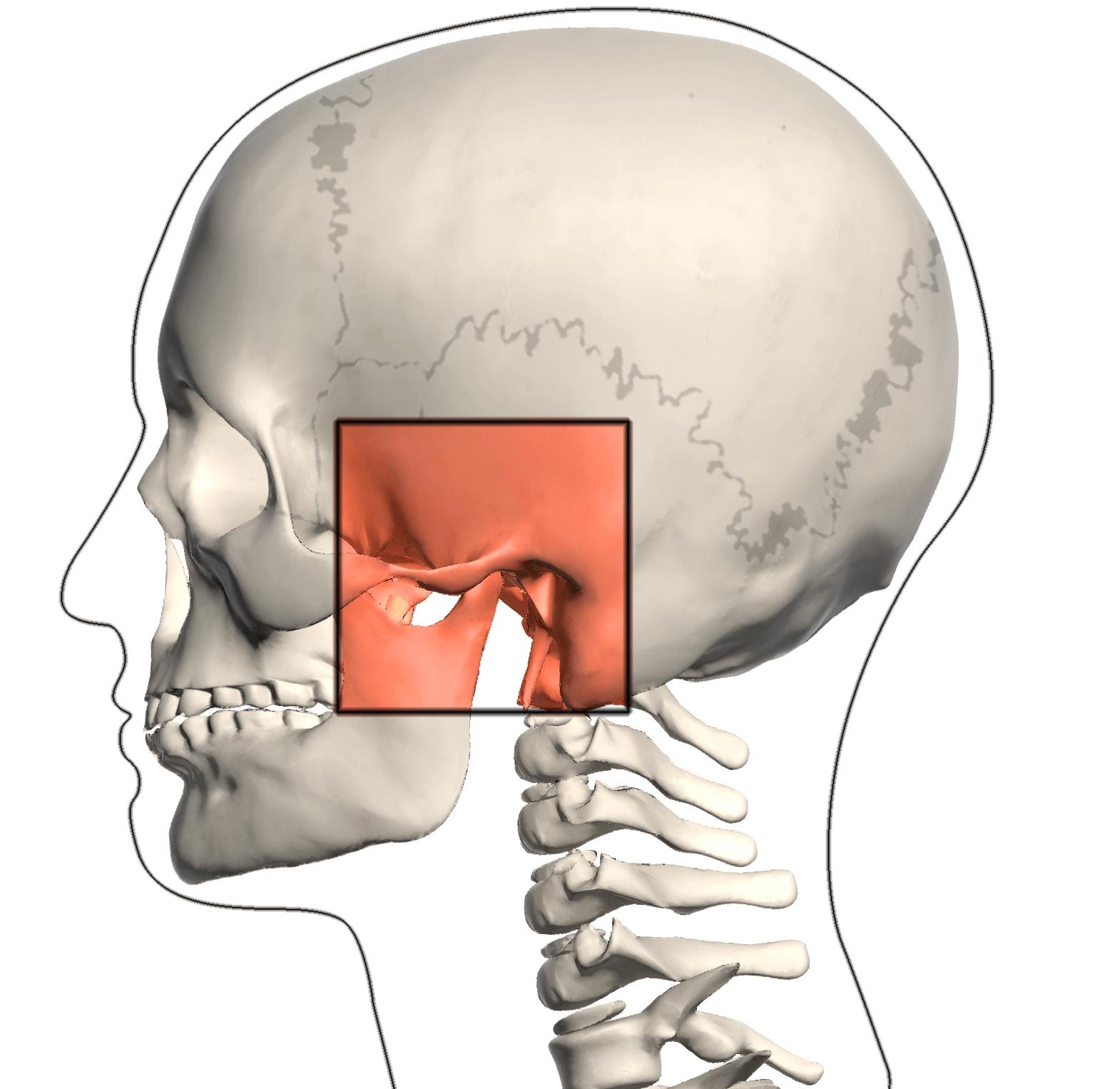 Temporomandibular Disorders Farmington Valley Physical Therapy