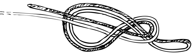 Figure 8 bight