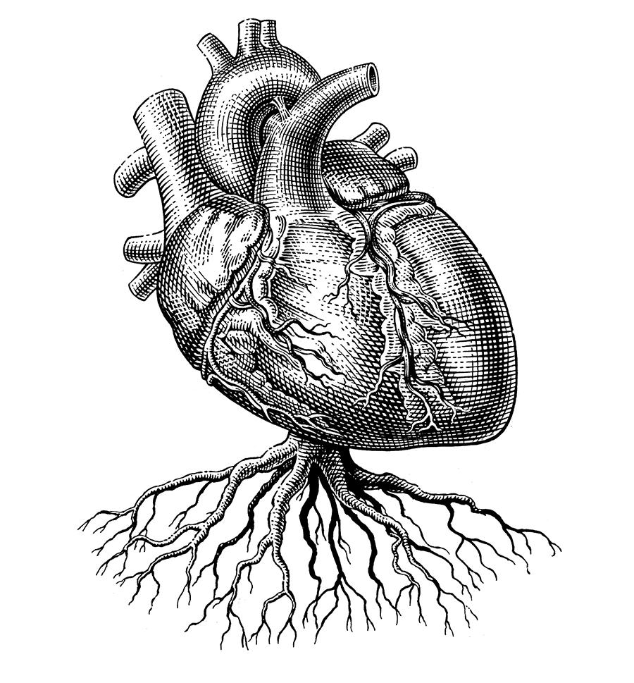 Heartfinalweb.jpg