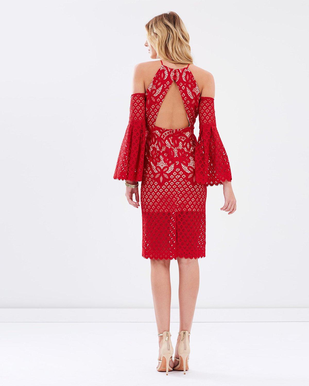 Bardot mila boarder lace dress $159.99