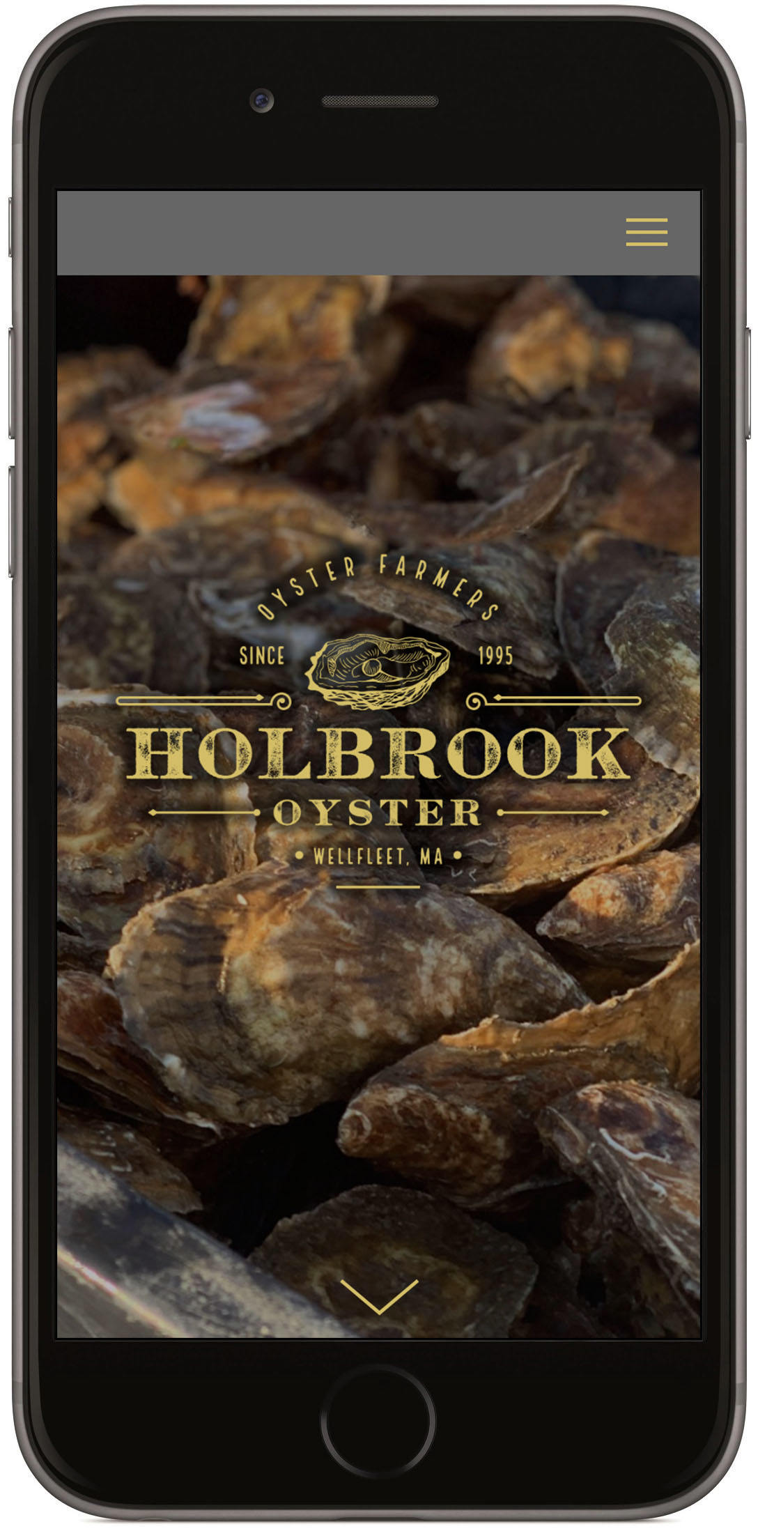 holbrook oyster iphone.jpg