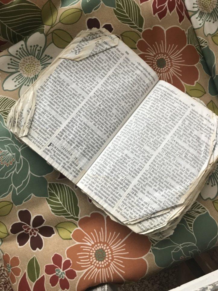 mama's bible.jpeg