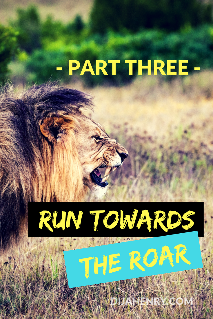 run towards the roar part three