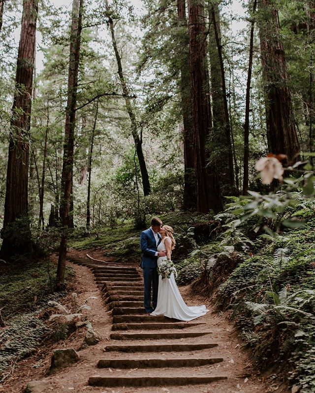 yesterday these two got married in the muir woods in san francisco. this has been the most honoring experience for me as a photographer. thank you abbie and eric for putting your trust in me to capture your sweet day❤️