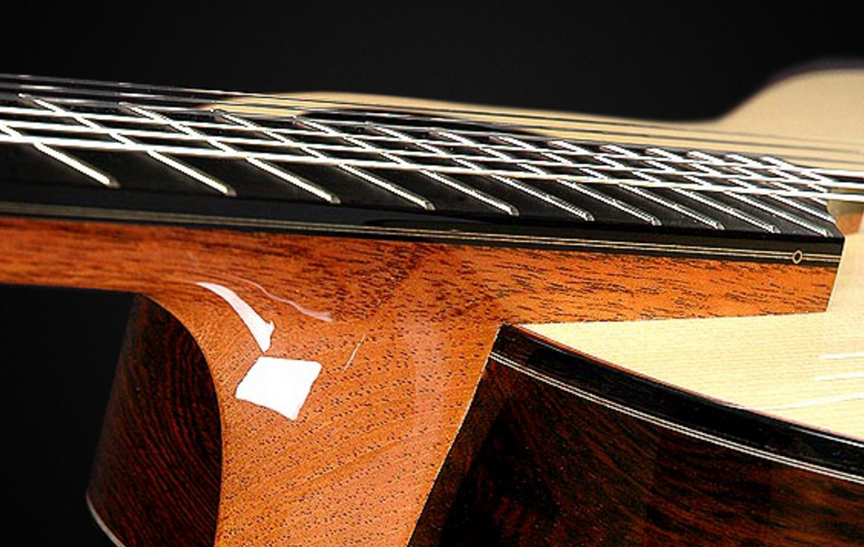 Check out the elevated fretboard...a player's dream!