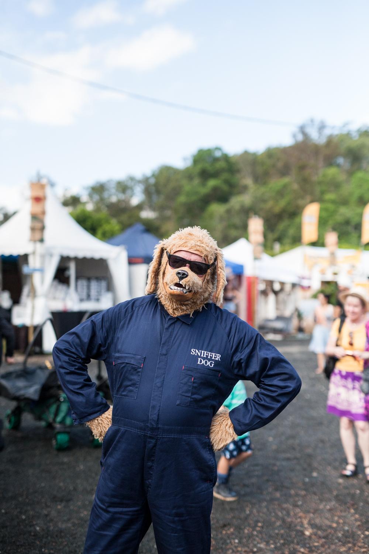woodord-folk-festival-cynthia-lee-photographer-11.jpg