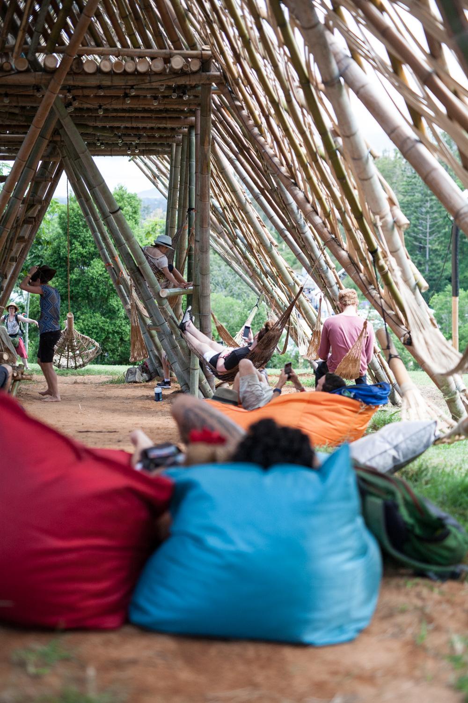 woodord-folk-festival-cynthia-lee-photographer-14.jpg