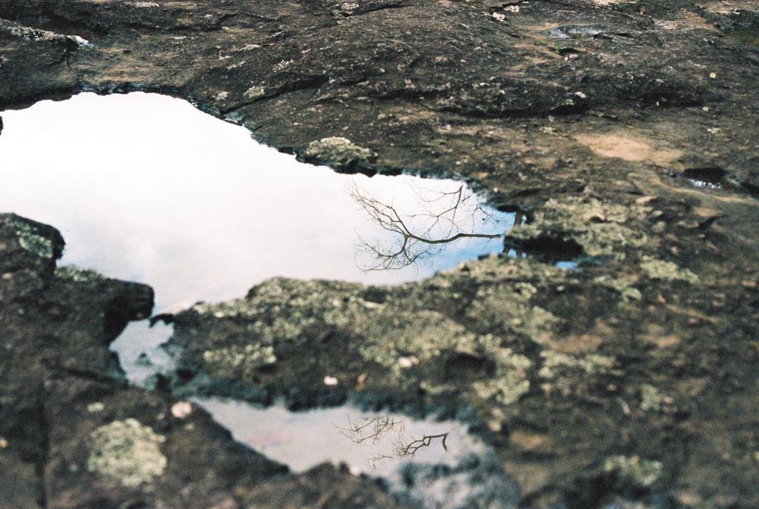 Reflections in pools at Cilento Park, Nambour. Sunshine Coast Hinterland