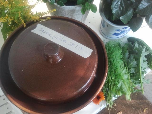 squash-pickles2-29-7-14.jpg
