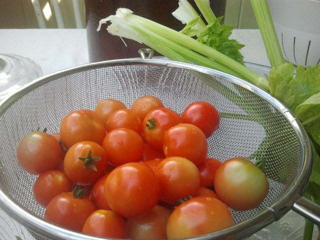 Halvmodne tomater og stangselleri fra hagen.