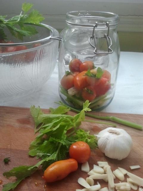 Tomater med hvitløk på en seng av stangselleri.