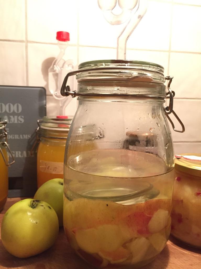 Epleskall ligger under vann på glass. I glasset til høyre står kokt eple tilsatt noen tyttebær. Tyttebær fungerer fint som naturlig konserveringsmiddel.