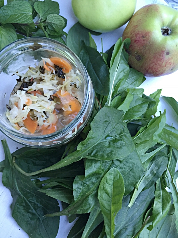 Surkål med groblad og små løvetannblader, en nydelig stimulans for tarmens slimhinne og bakterieflora.
