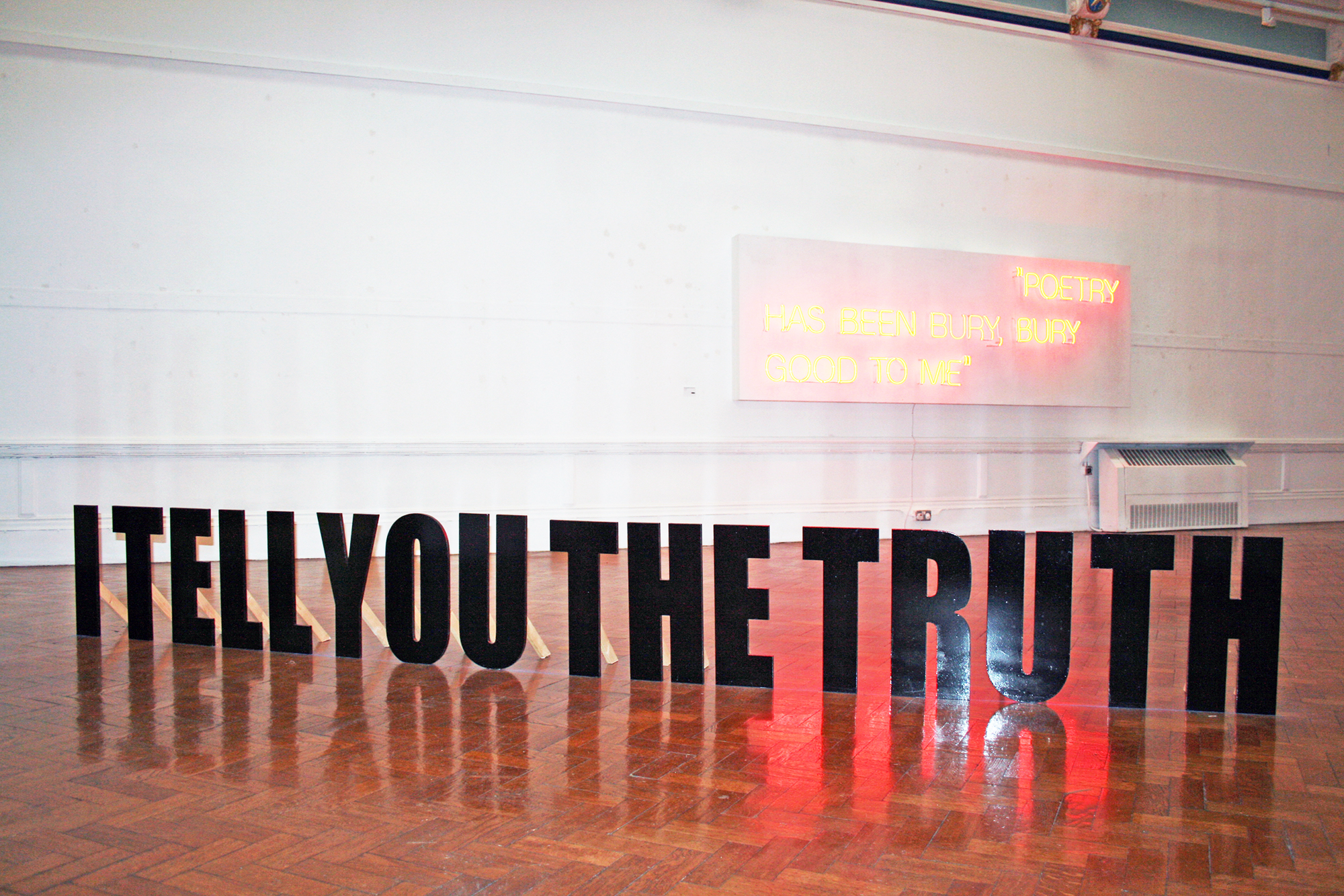 I TELL YOU THE TRUTH. Installation 2. Kate Pickering.