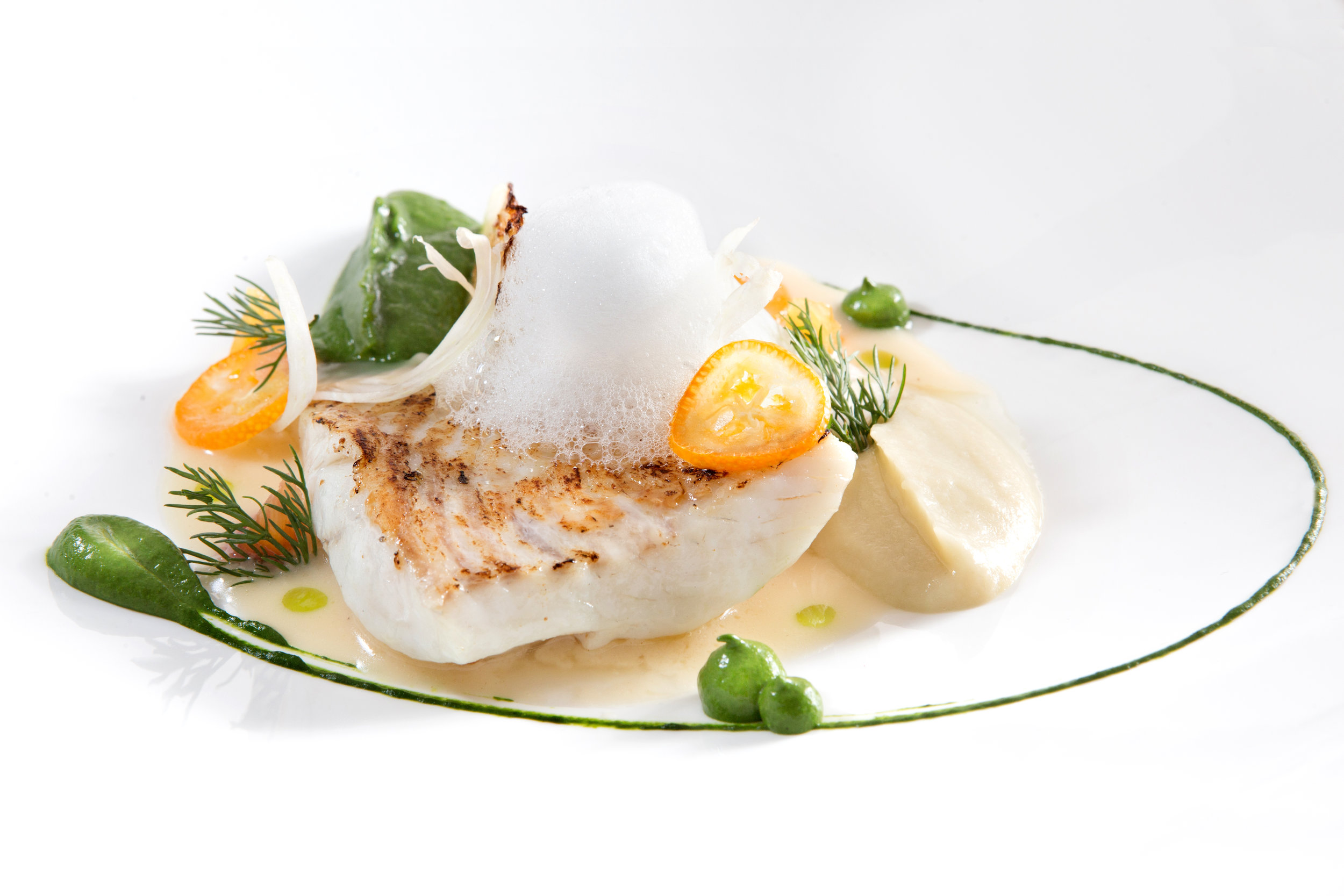 Turbot and fennel.jpg