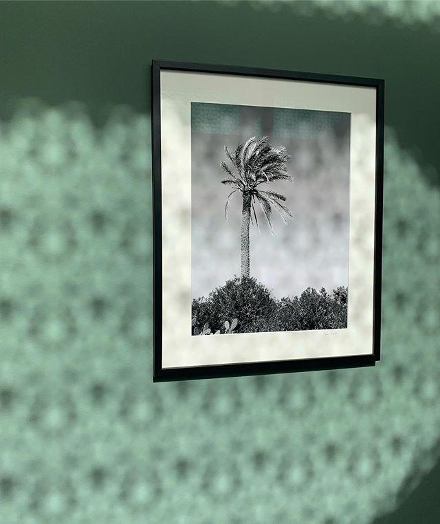 Capturing reflections @hotelelllorenc  #elllorenc #newhotel #mallorca #palma #hotel #design #reflections