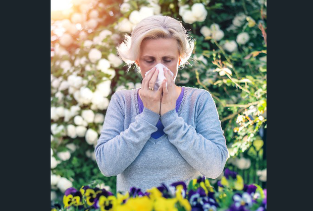 hayfever.png