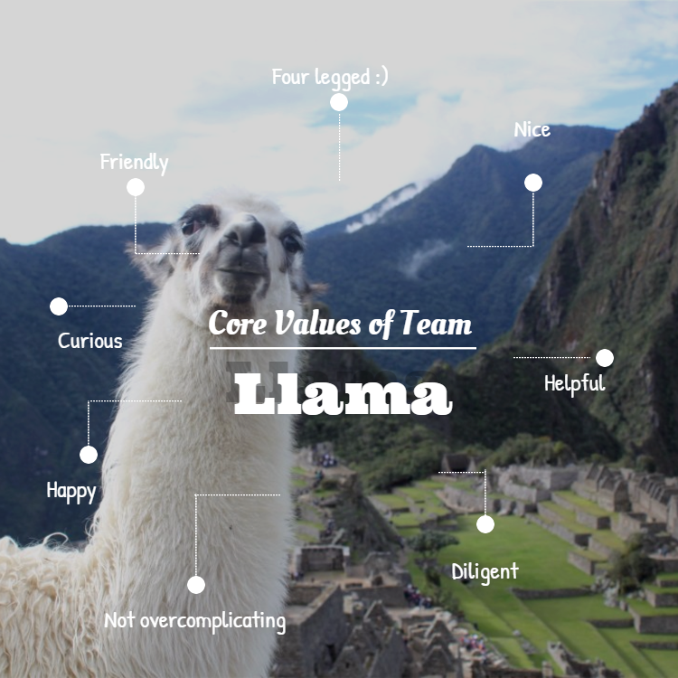 Llama team values