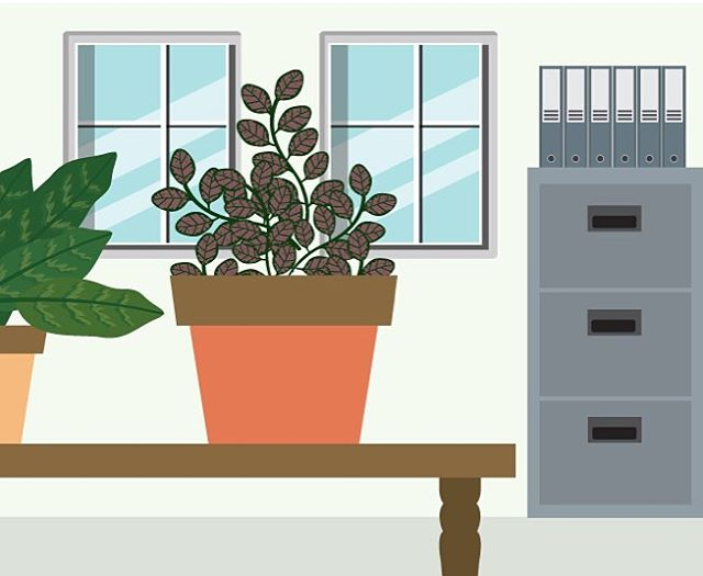 Check out an awesome infographic about plants for your office on Air Releaf Learn! Link in bio👆